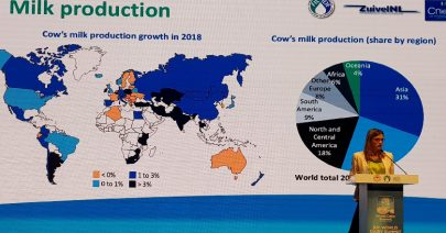 Mélanie Richard, Head of Economy at CNIEL announces the launch of the much anticipated IDF World Dairy Situation Report 2019
